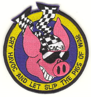 CAC3 patch